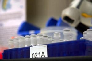 Norma ISO 15189 como referente de calidad en los laboratorios clínicos
